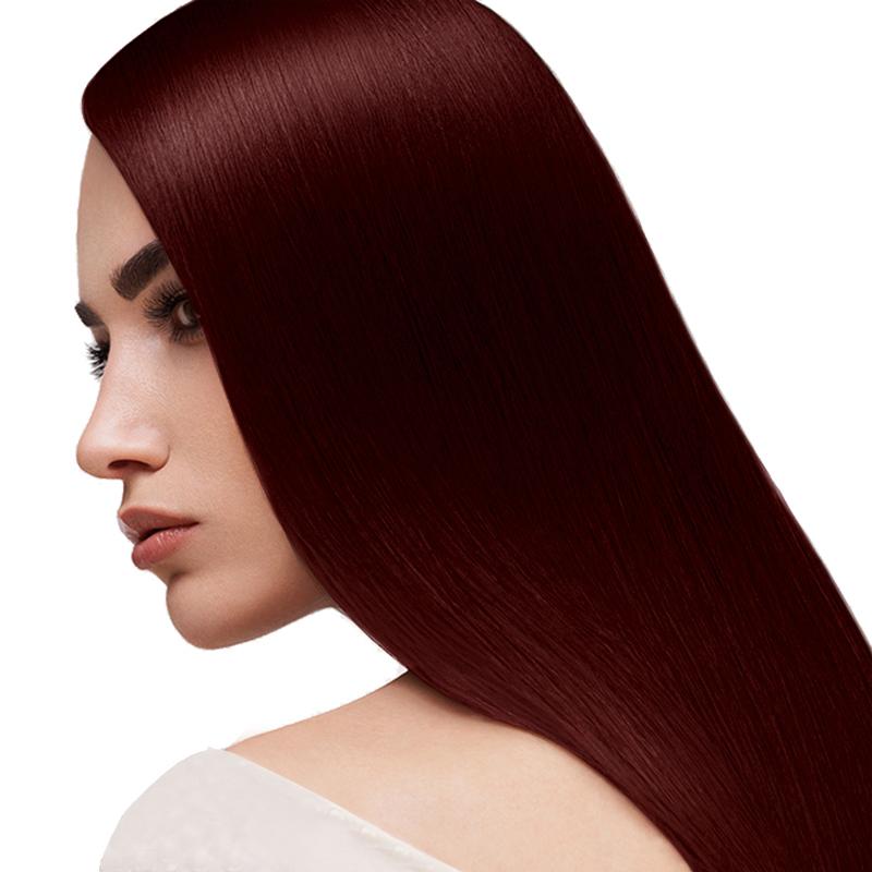 رنگ مو ویتالیتیس مدل Art گروه قرمز حجم 100 میل شماره 6.6 - قرمز شاه بلوطی تیره